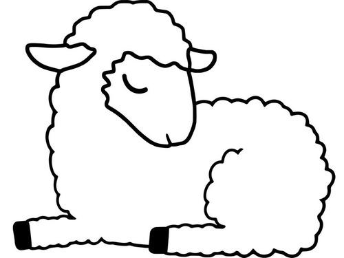 羊毛35kg