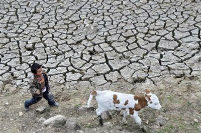 中国を襲う大干ばつ02