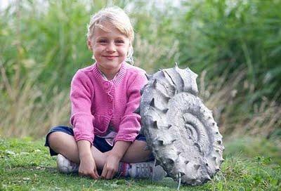5歳がアンモナイト発見01