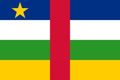 変わった国旗12