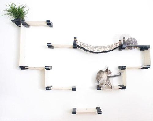 猫と吊り橋03
