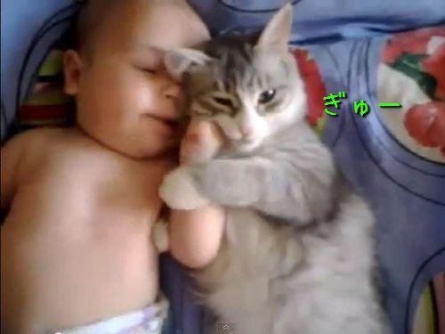 赤ちゃんと猫00
