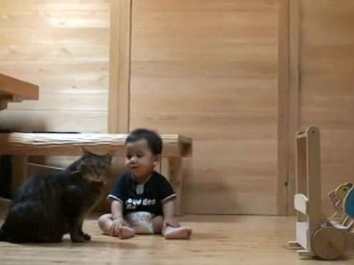 赤ちゃんに遊び方を教える猫01