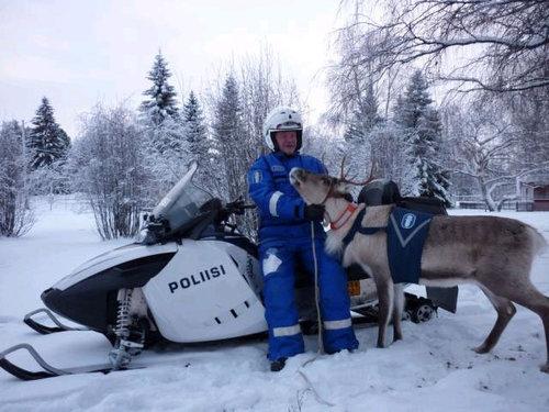 フィンランドには警察トナカイ01