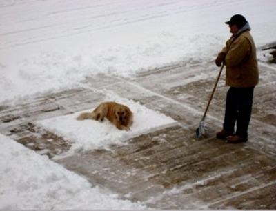 雪かきで困った02