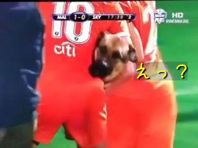 女子サッカーに犬が乱入