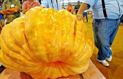 世界一大きな野菜や果物07
