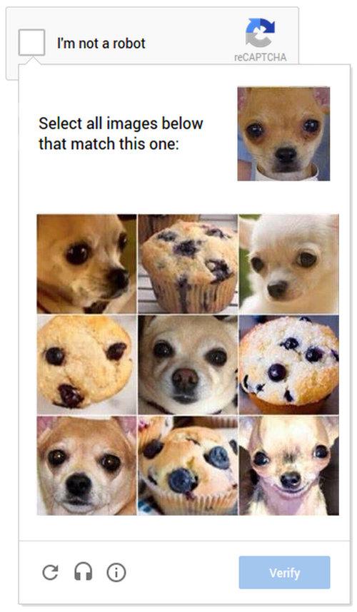 犬とマフィン02