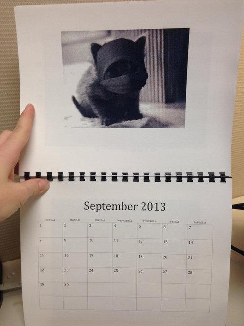 猫のカレンダー09