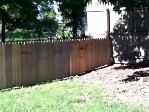 犬用のフェンスに誤算03
