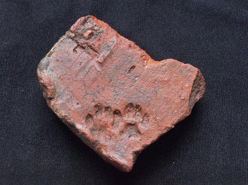 古代ローマの猫の足あと04