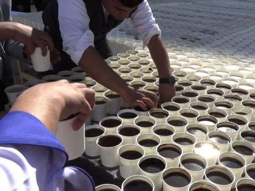 7260杯のコーヒーで「ツタンカーメン」00
