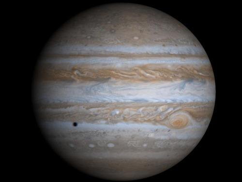 木星に巨大な「イルカ」の姿00