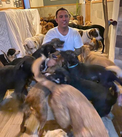 ハリケーンで300匹の犬を自宅で保護02