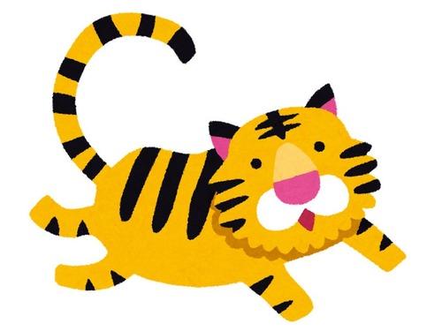 道で虎と出会った