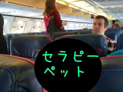 セラピーペットが飛行機に乗っている00