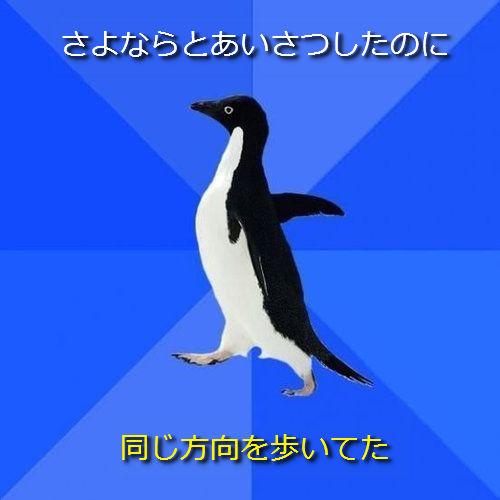 社交性のないペンギン24●さよならとあいさつしたのに ─ 同じ方向を歩いてた