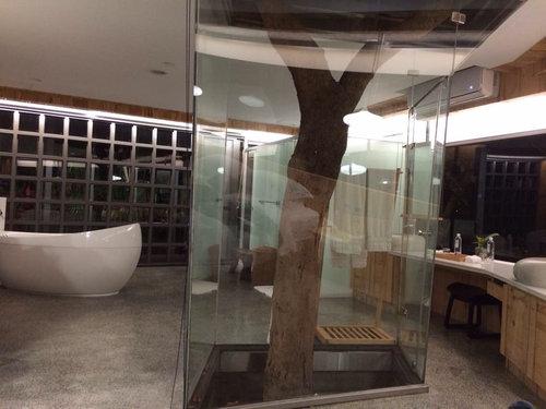 150本の木を所持するアパート06
