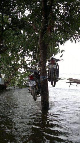 タイの洪水05