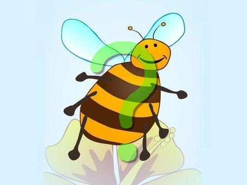 ミツバチのコスチューム00