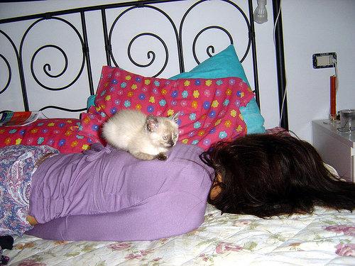 ペットと寝る理想と現実08