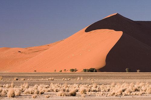 ナミブ砂漠のDune4502