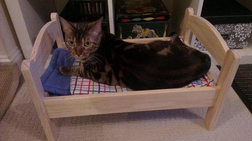 猫ベッド08