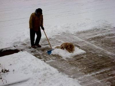 雪かきで困った04