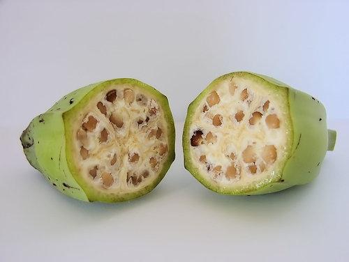 果物がどれだけ品種改良されたのか03