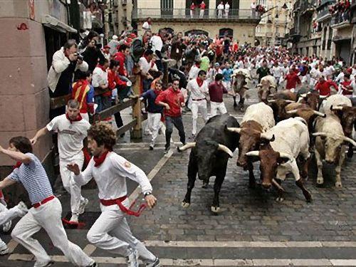 牛追い祭り・玉おい祭り00