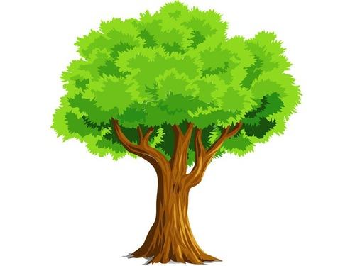 木が倒れてもまた起き上がって育つとき