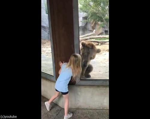 クマと少女のかくれんぼ02