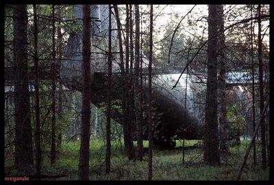 森に捨てられたロシアの輸送機03
