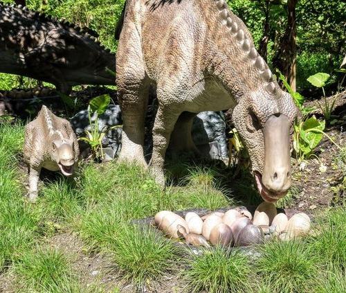 恐竜の体温は温かかった00