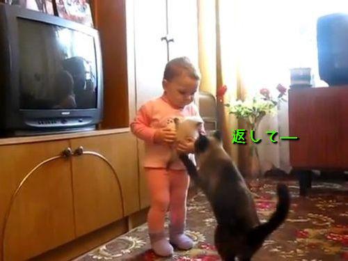 子猫を返して00