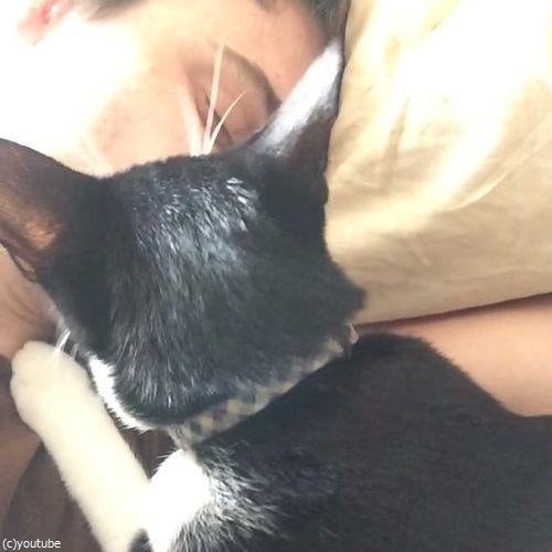 猫に起こされる朝05