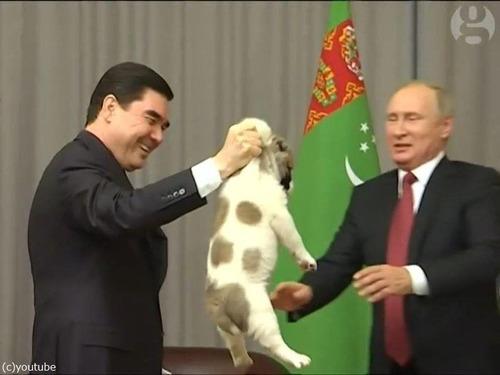 プーチンでさえ犬の正しい抱き方は知っている03