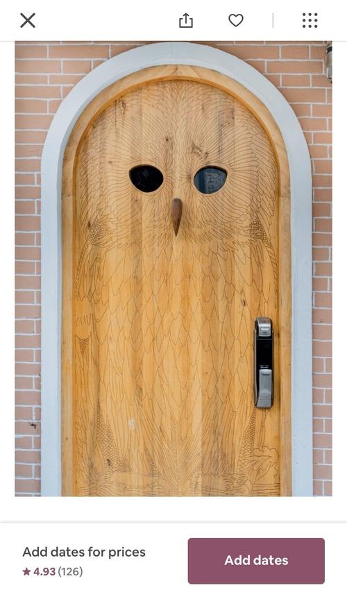 フクロウデザインのドア02