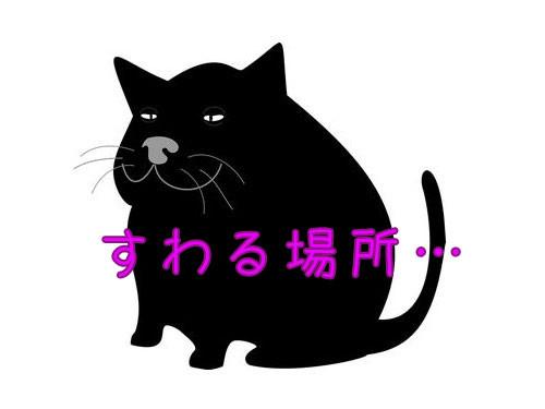 太った猫にぴったりの座り場所00