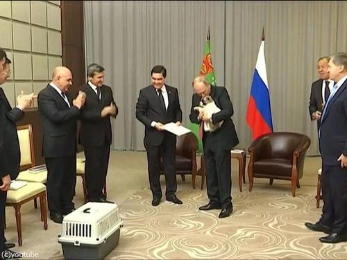 プーチンでさえ犬の正しい抱き方は知っている06