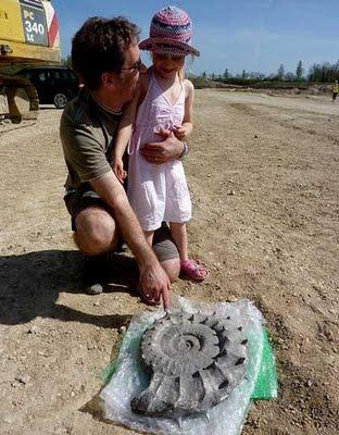 5歳がアンモナイト発見02