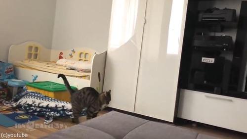毛布泥棒の犯人03