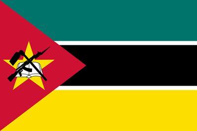変わった国旗07