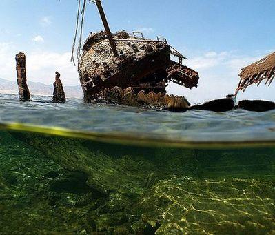 水面の上と下03