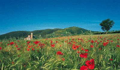 イタリア・トスカーナ地方の絶景04