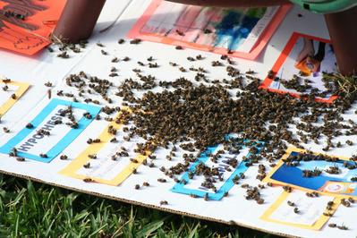 「家にハチの巣が…」素人が繰り広げたムチャな死闘15