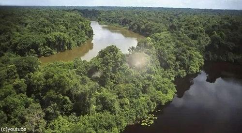5年前にカナダで失踪男性、1万km離れたアマゾンの密林で発見01