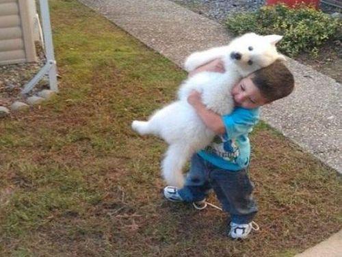 子犬を抱きかかえる少年00