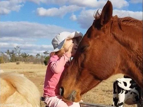 馬が3歳の女の子の歌にウットリ00