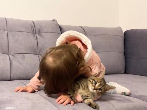 女の子の赤ちゃんと子猫01